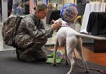 Airwoman being greeted by her dog  U S  Air Force photo by Airman 1st Class Erica Crossen Released