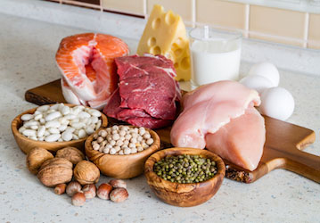 Protein food ideas such as meats  dairy  eggs  beans and nuts