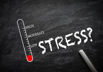 "The word ""STRESS?"" and a thermometer with markings for ""Low"", ""Moderate"", and ""High"" drawn on a chalkboard"