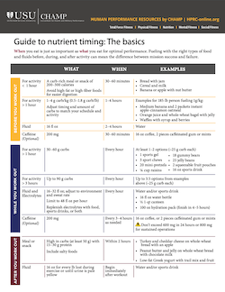 Link to Guide to Nutrient Timing.