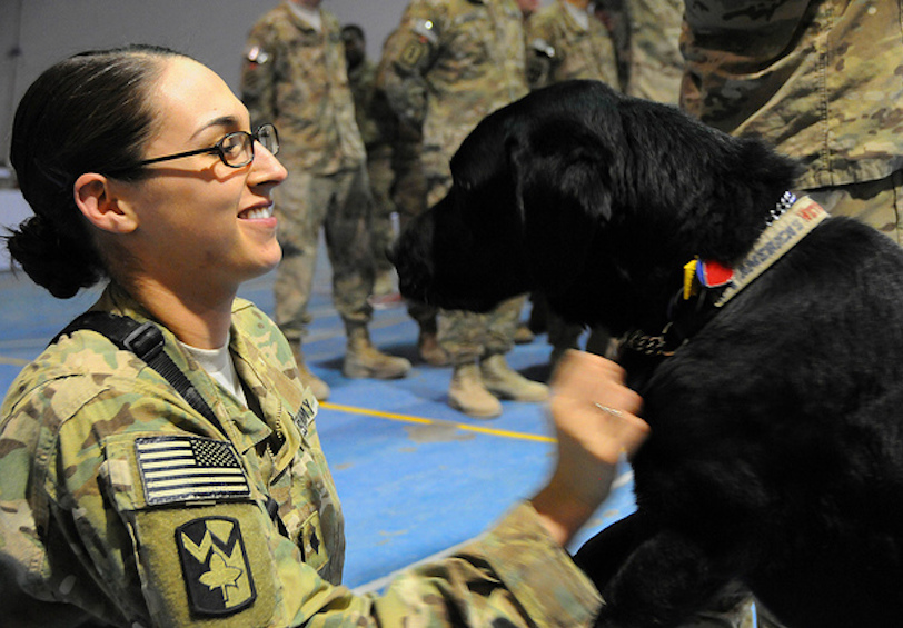 Female soldier petting black service dog (DoD photo by Maj. Charles Patterson, Task Force MED-A Public Affairs/Released)