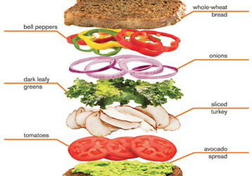 Layers of healthy sandwich ingredients