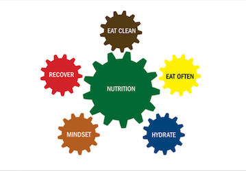5 fundamentals of nutrition  Eat clean  Eat often  Hydrate  Mindset  and Recover