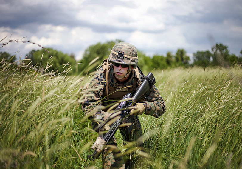 Marine patrolling grassy area (U.S. Marine Corps photo by 1st Lt. Hector R. Alejandro Jr./Released)