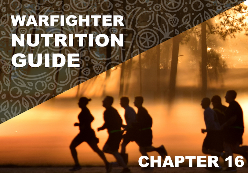 Warfighter Nutrition Guide. Chapter 16. Silhouette of people running at sunrise.